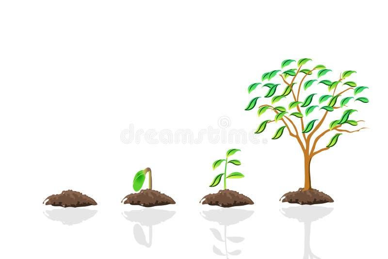 增长结构树 皇族释放例证