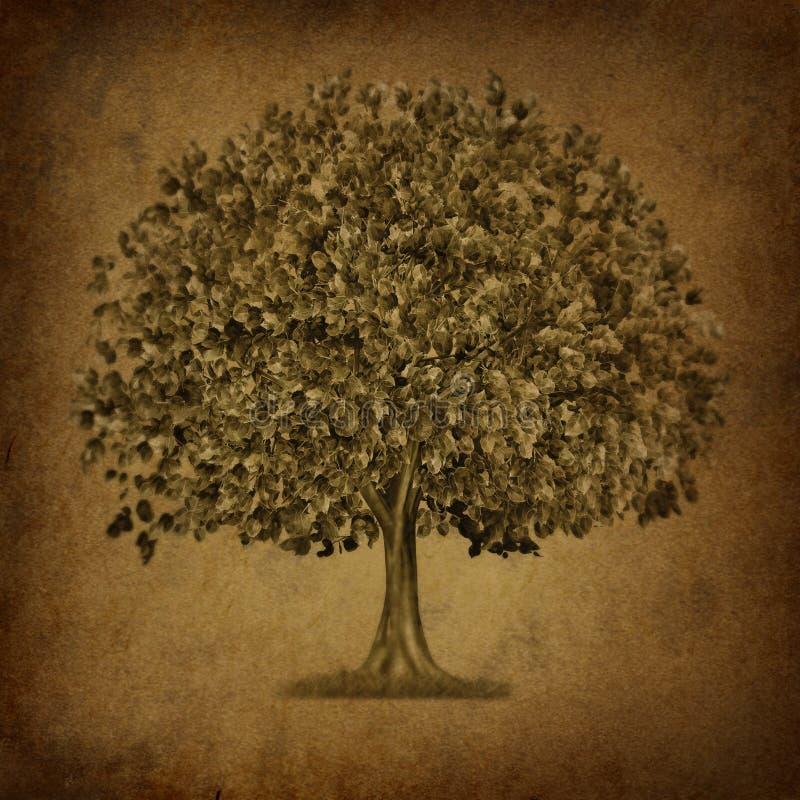 增长grunge符号纹理结构树 库存例证