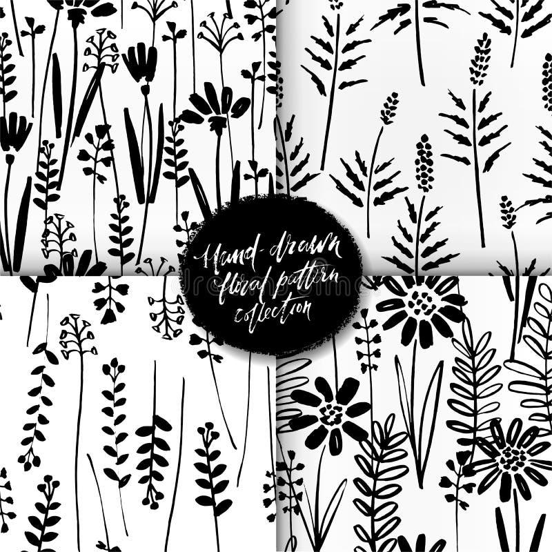 墨水画野生植物,草本,单色植物的例证,花卉元素,手的传染媒介无缝的样式套 库存例证