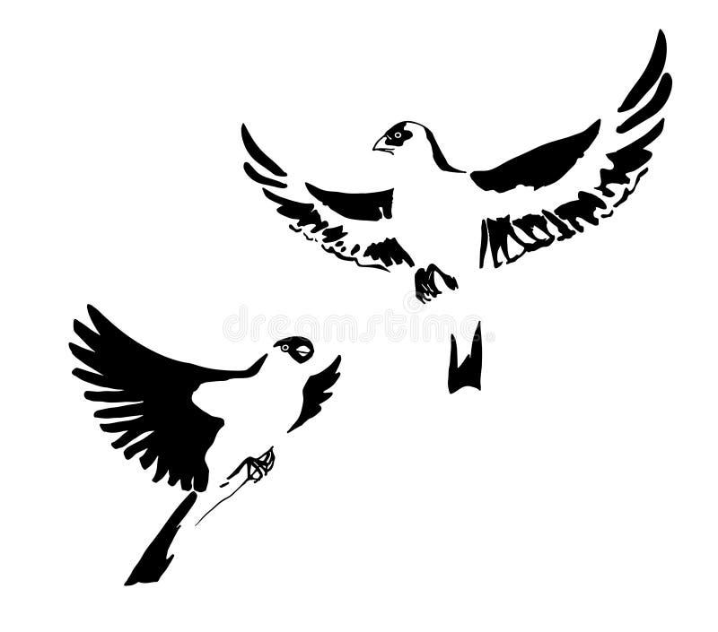 墨水绘的两只手拉的黑风格化鸟 也corel凹道例证向量 背景查出的白色 库存例证