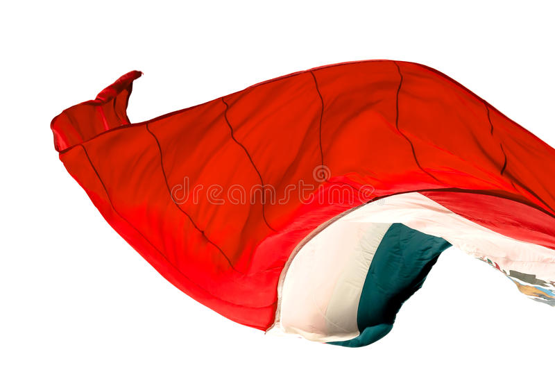 墨西哥国旗 免版税库存照片