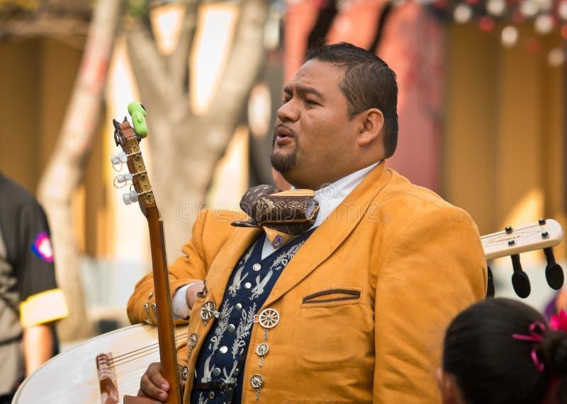 墨西哥流浪乐队结合戏剧墨西哥人音乐 免版税图库摄影