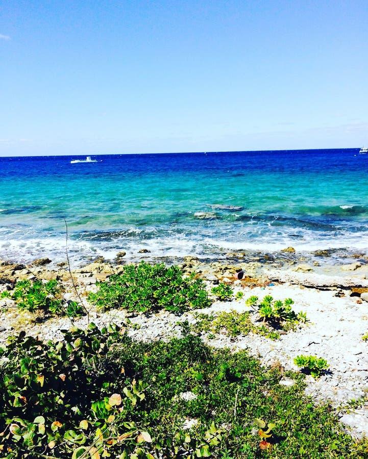 墨西哥海洋 免版税库存照片