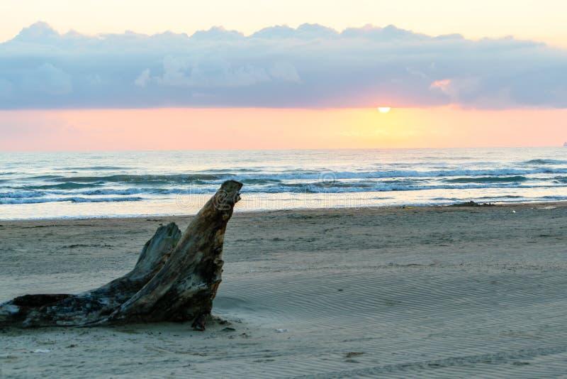 墨西哥海滩场面 图库摄影