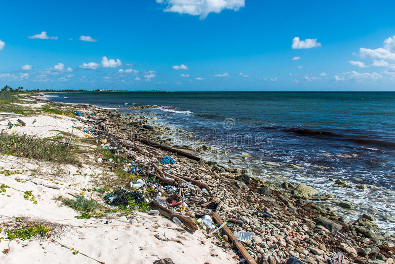 墨西哥海洋污染问题塑料废弃物 库存照片