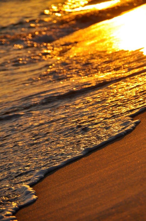 墨西哥湾海岸 库存图片