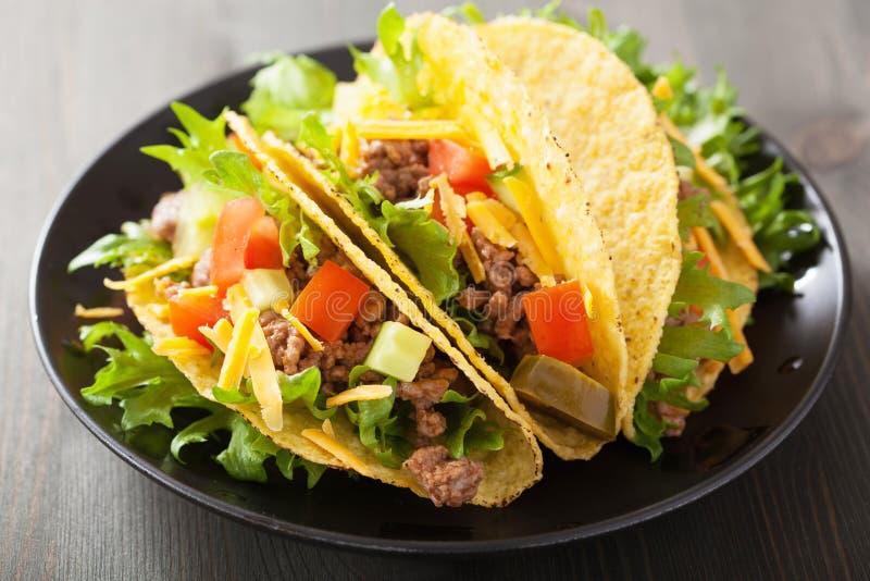 墨西哥炸玉米饼壳用牛肉和菜 免版税库存照片
