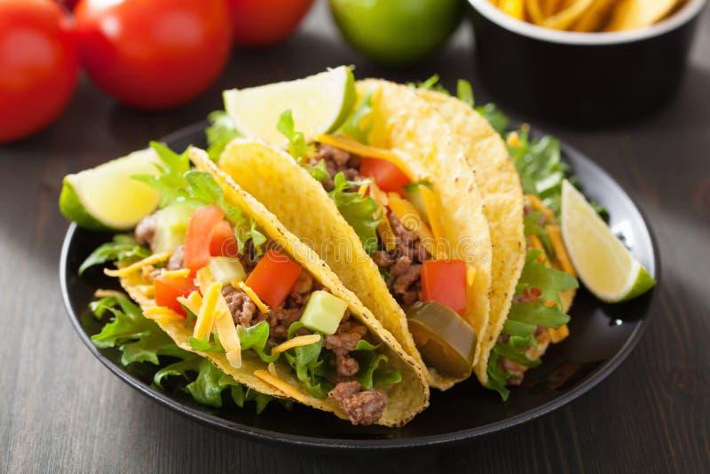 墨西哥炸玉米饼壳用牛肉和菜 免版税图库摄影