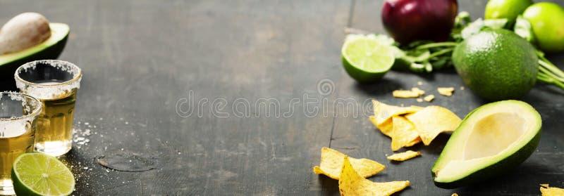 墨西哥烤干酪辣味玉米片切削用自创新鲜的guacomole调味汁 免版税库存照片