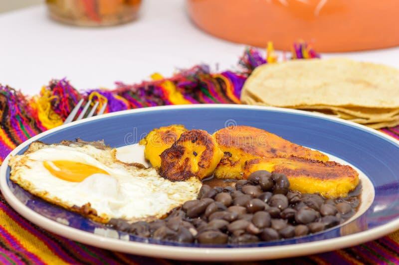 墨西哥热带早餐 库存照片