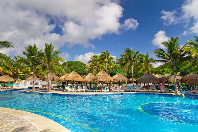 墨西哥热带池的游泳 图库摄影