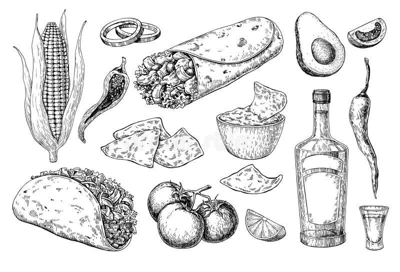 墨西哥烹调画 传统食物和饮料传染媒介 向量例证