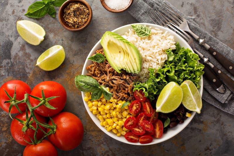 墨西哥色拉盘用米和被拉扯的猪肉 免版税库存照片