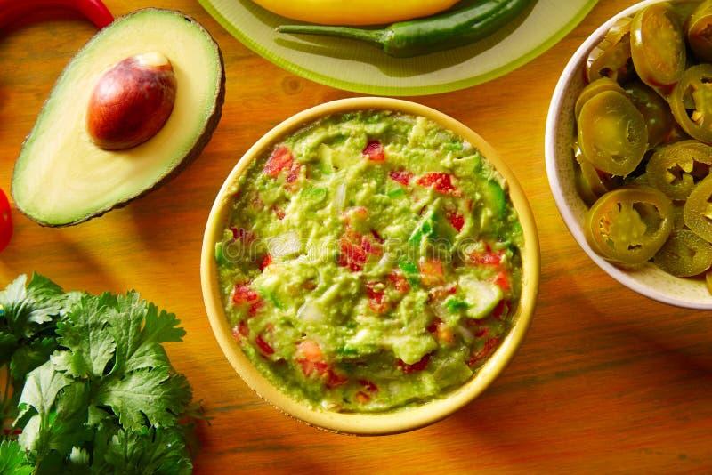墨西哥食物混杂的鳄梨调味酱捣碎的鳄梨酱烤干酪辣味玉米片辣味番茄酱 库存图片