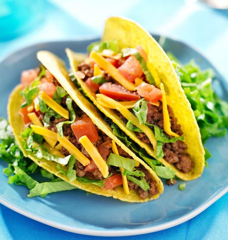 墨西哥食物-牛肉炸玉米饼 免版税库存图片