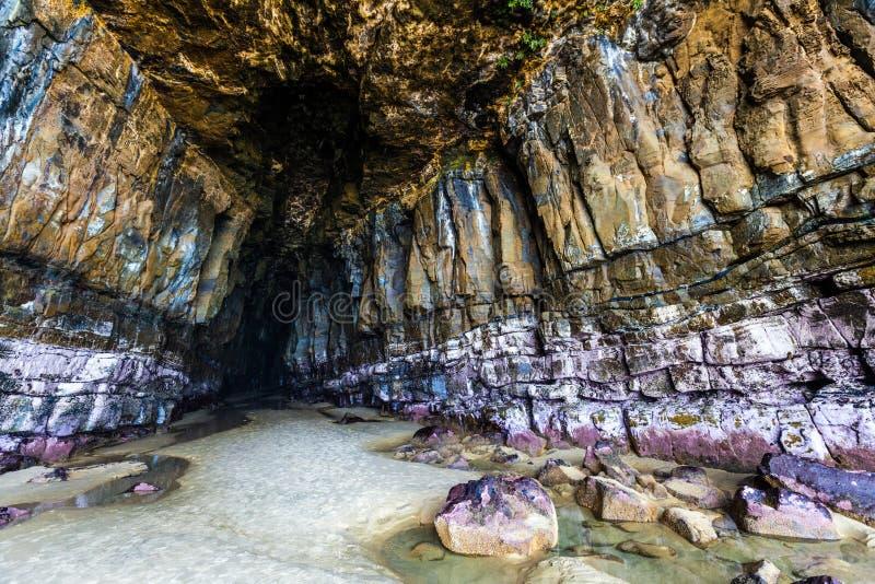 壮观的大教堂洞, Catlins,新西兰 库存照片