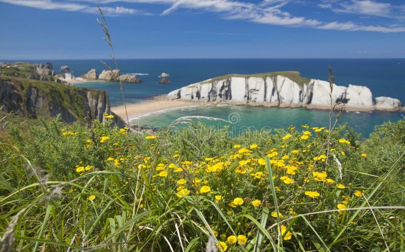 壮观的海滩Playa de los Covachos,坎塔布里亚 图库摄影