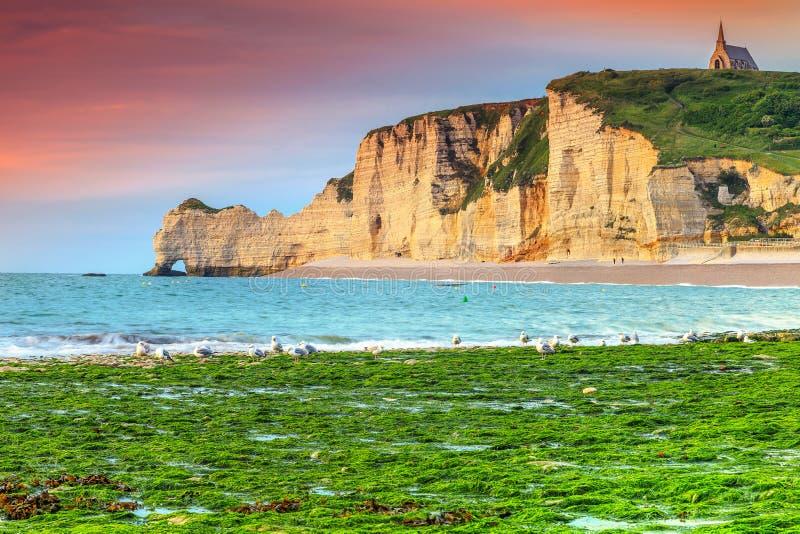 壮观的自然岩石曲拱奇迹, Etretat,诺曼底,法国 免版税库存图片