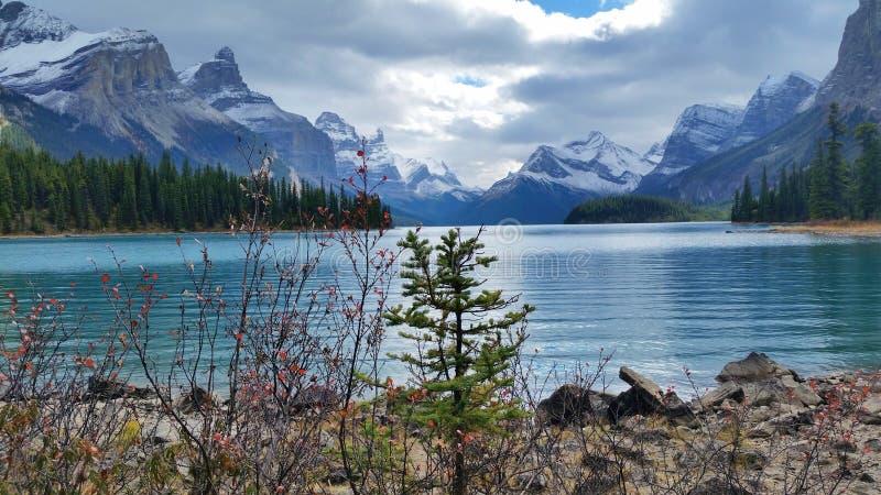 壮观自然在加拿大 库存照片