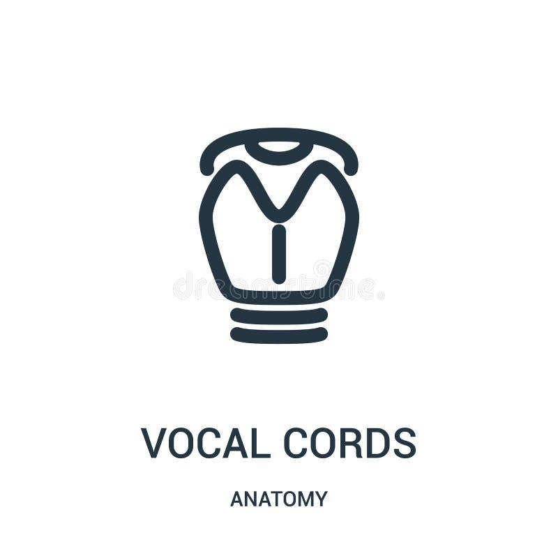 声带从解剖学汇集的象传染媒介 稀薄的线声带概述象传染媒介例证 线性标志为使用 向量例证