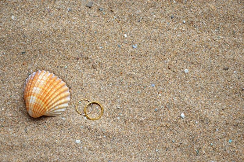 贝壳和婚戒在沙子 库存照片