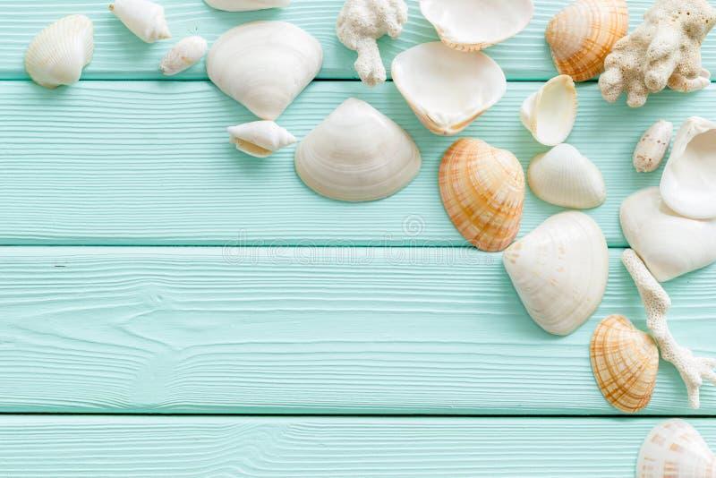 壳和海边背景博克的或桌面在薄荷的绿色木台式视图大模型 免版税库存照片