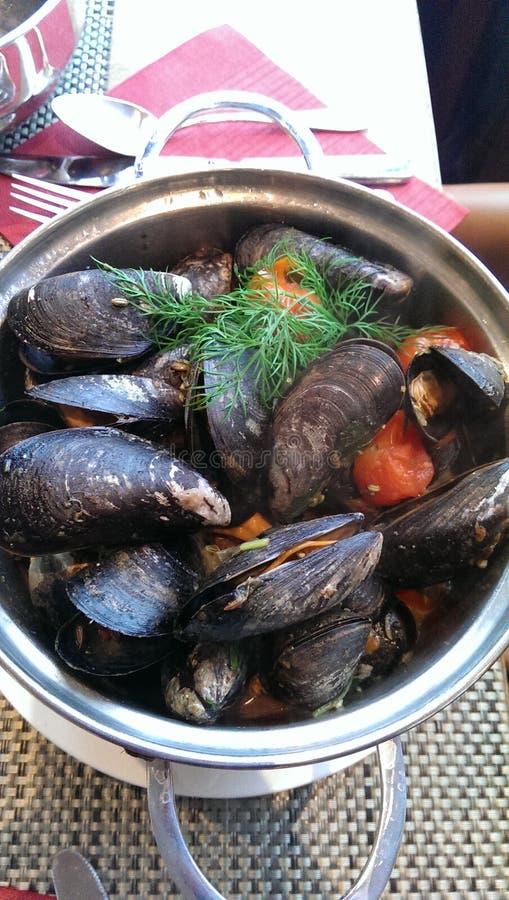壳食物设计 免版税图库摄影