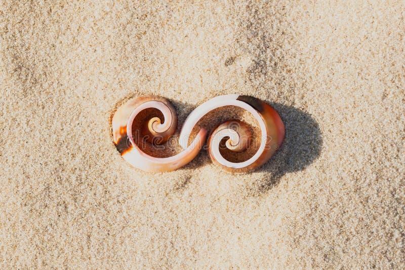 壳,元素图形设计标志无限在海滩的 图库摄影