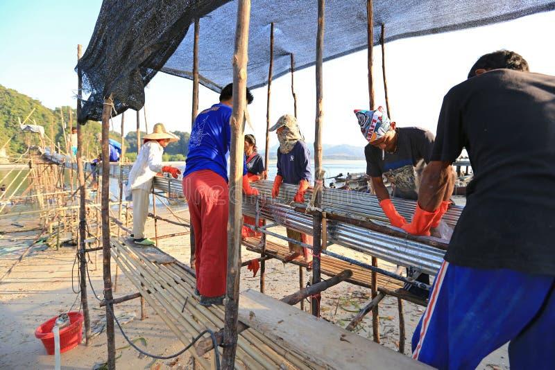处理从海运的渔夫意志薄弱的人抓住 免版税图库摄影