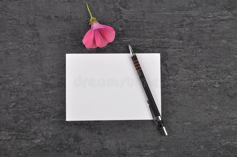 备忘录、笔和冬葵在板岩 免版税库存照片