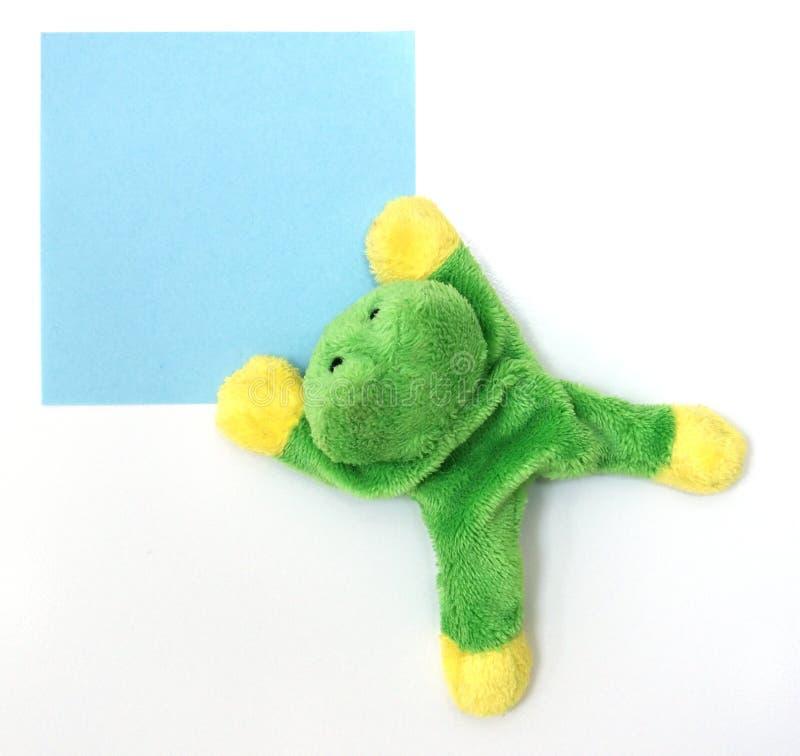 备忘录青蛙 免版税库存照片