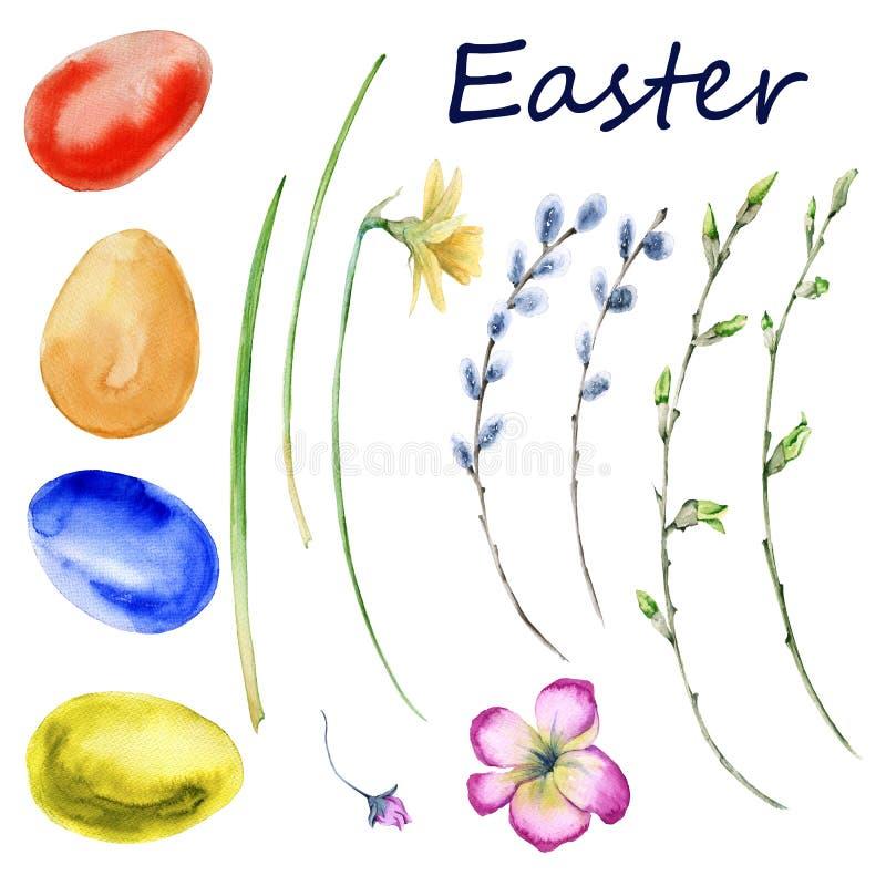 复活节套春天开花,枝杈,鸡蛋 背景查出的白色 皇族释放例证