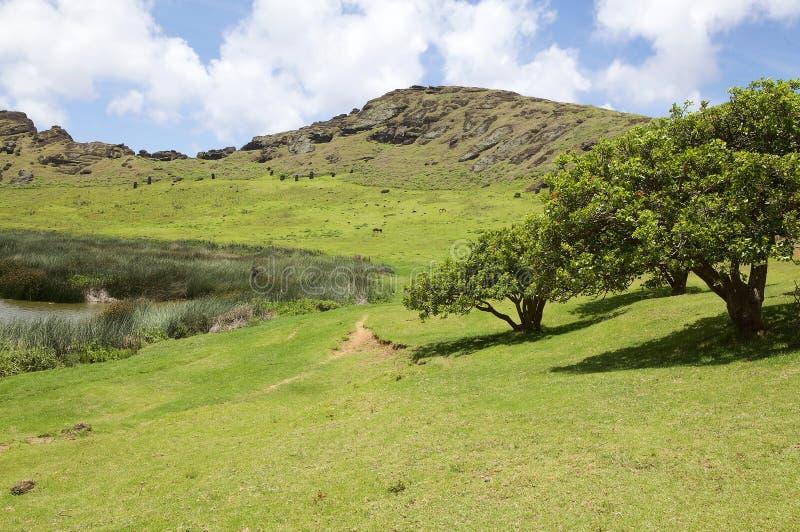 复活节岛,智利 库存图片