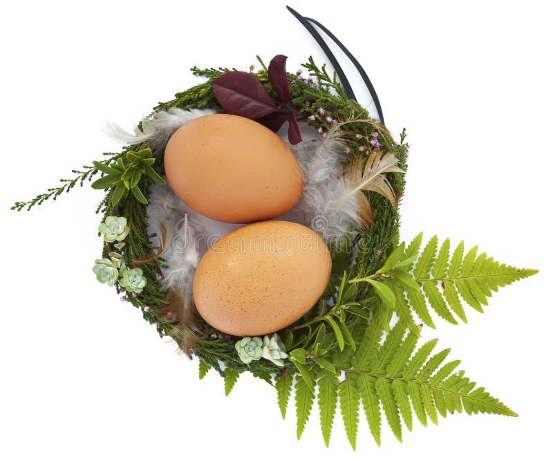 复活节嵌套用twio鸡蛋和羽毛 免版税库存图片