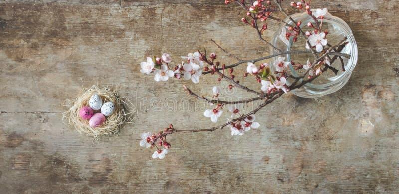 复活节巢的顶视图与白色和桃红色有雀斑和春天树枝的在木背景 库存照片