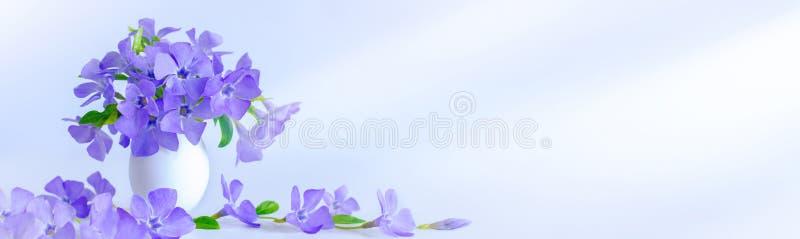 复活节彩蛋和小树枝蓝色花在蓝色背景 E 免版税库存图片