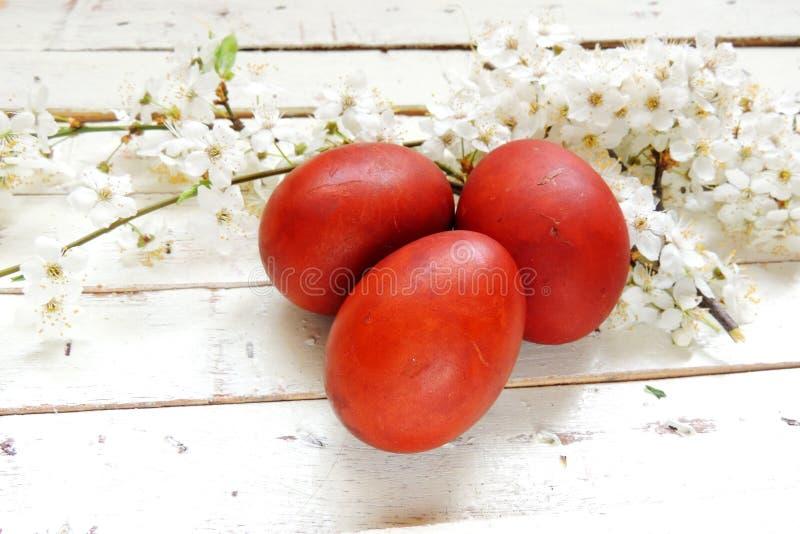 复活节彩蛋和樱桃枝杈 免版税库存图片