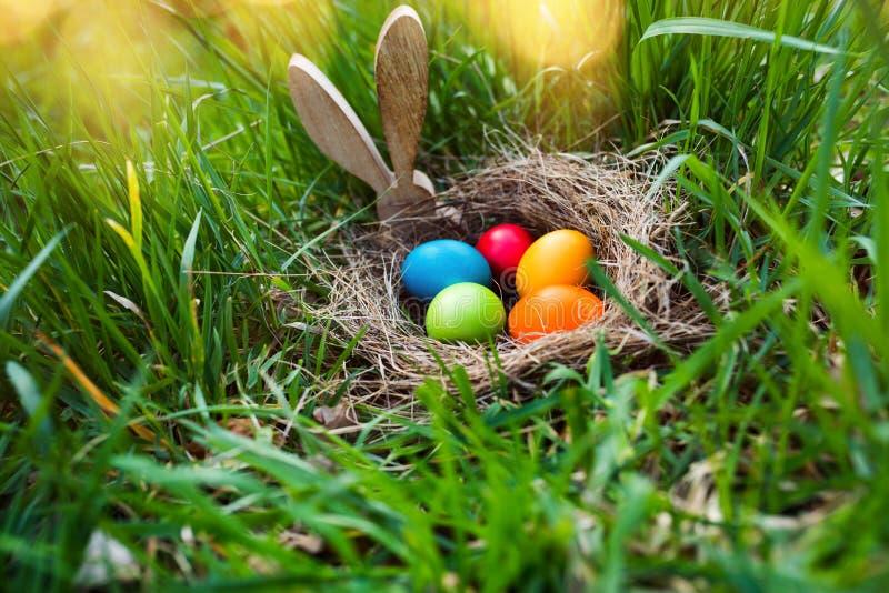 复活节彩蛋在春天草甸搜寻 库存图片
