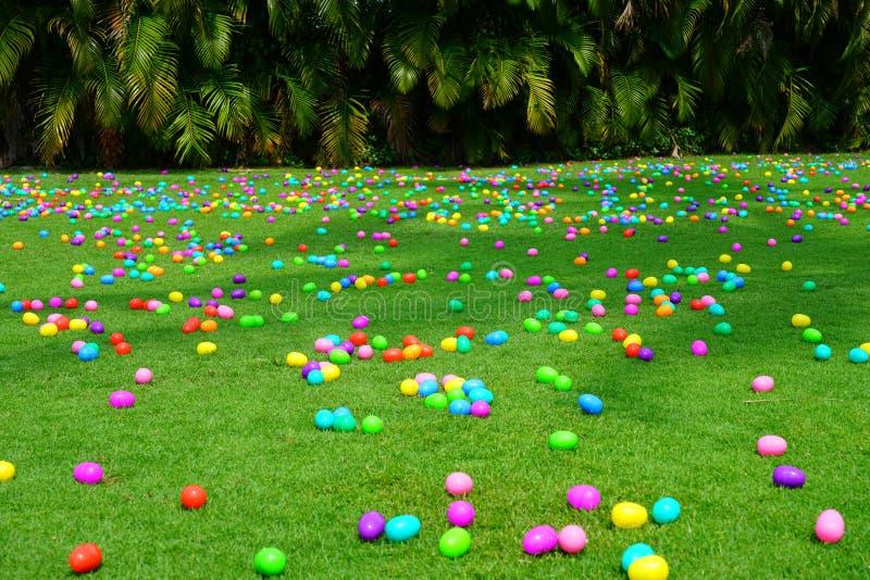 复活节彩蛋狩猎用在绿色草坪的塑料鸡蛋 免版税库存图片