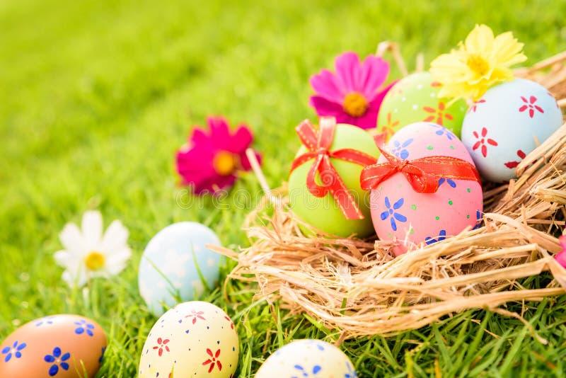 复活节快乐!在巢的特写镜头五颜六色的复活节彩蛋 库存照片