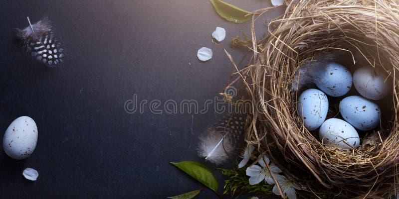 复活节快乐;复活节彩蛋在巢和春天在桌ba开花 免版税库存图片