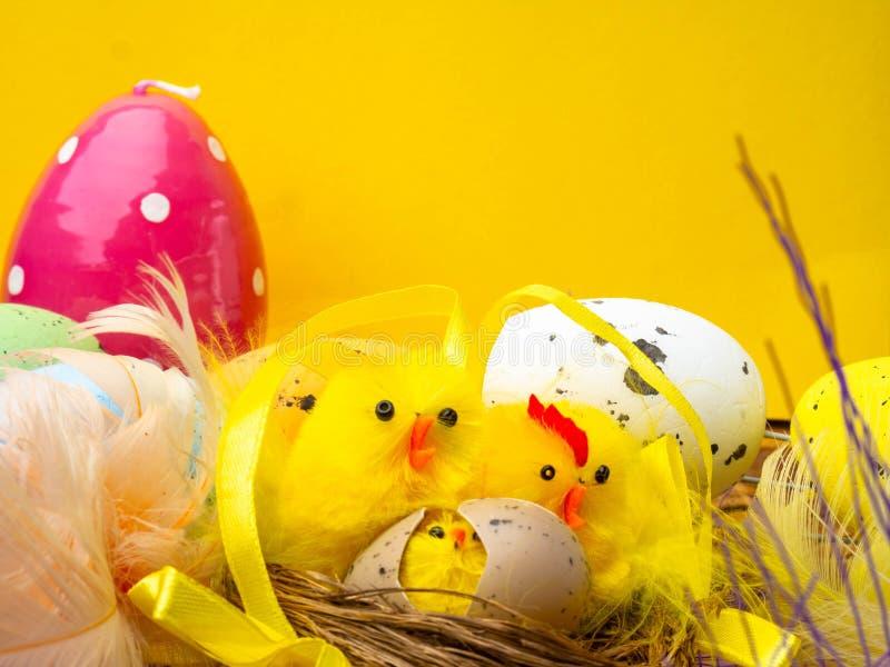 复活节构成,五颜六色的鸡蛋,在巢,颜色羽毛的鸡 免版税库存照片