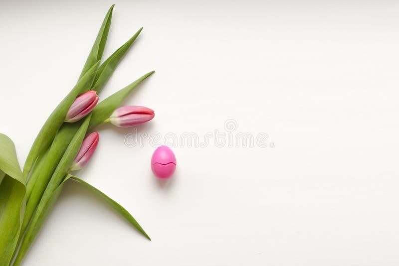 复活节桃红色鸡蛋和桃红色郁金香 免版税库存照片