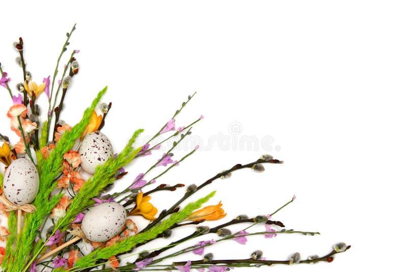 复活节植物布置 免版税库存图片