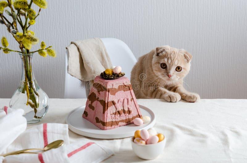 复活节樱桃巧克力与巢的凝乳在欢乐桌上的蛋糕和鸡蛋与逗人喜爱的苏格兰折叠猫 E r 免版税库存照片