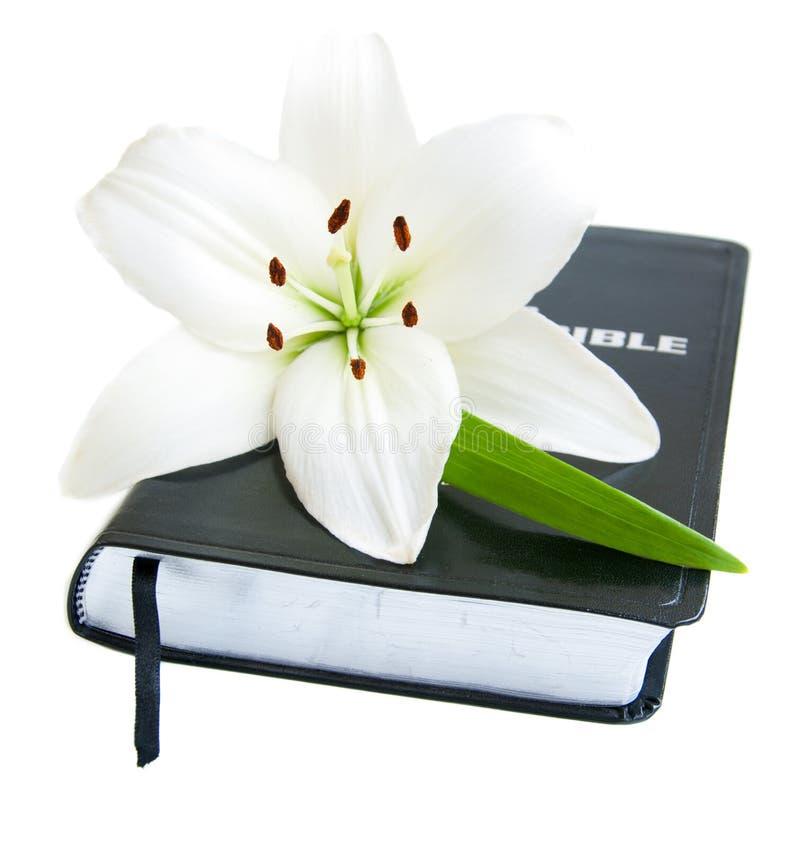 复活节百合和圣经 免版税库存照片