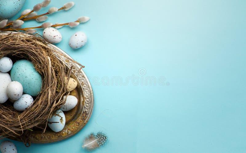 复活节背景用复活节彩蛋和春天在蓝色t开花 免版税库存图片