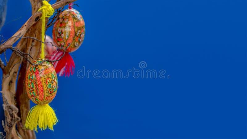 复活节背景鸡蛋绘与乌克兰全国装饰品在分支垂悬 图库摄影