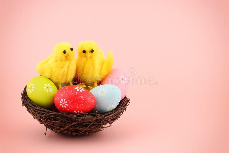 复活节贺卡用五颜六色的被绘的鸡蛋和两只逗人喜爱的鸡在巢在桃红色背景与拷贝空间 库存图片