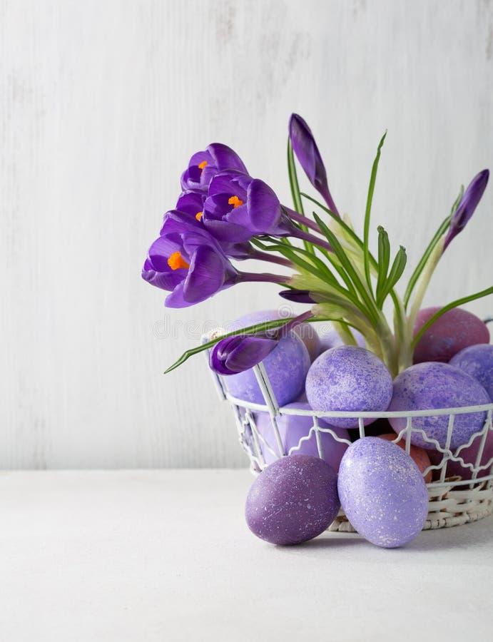 复活节静物画用色的鸡蛋和花番红花 库存照片
